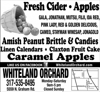 Fresh Cider - Apples