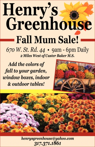 Fall Mum Sale!