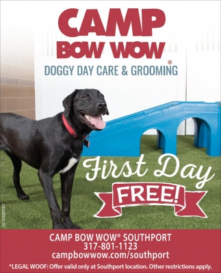 Doggy Day Care & Gromming